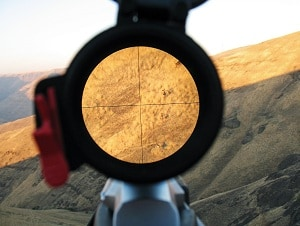 DeerHunting RifleScopeReviewsImage300