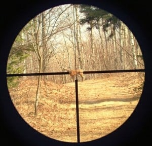 How To Zero A Rifle Scope
