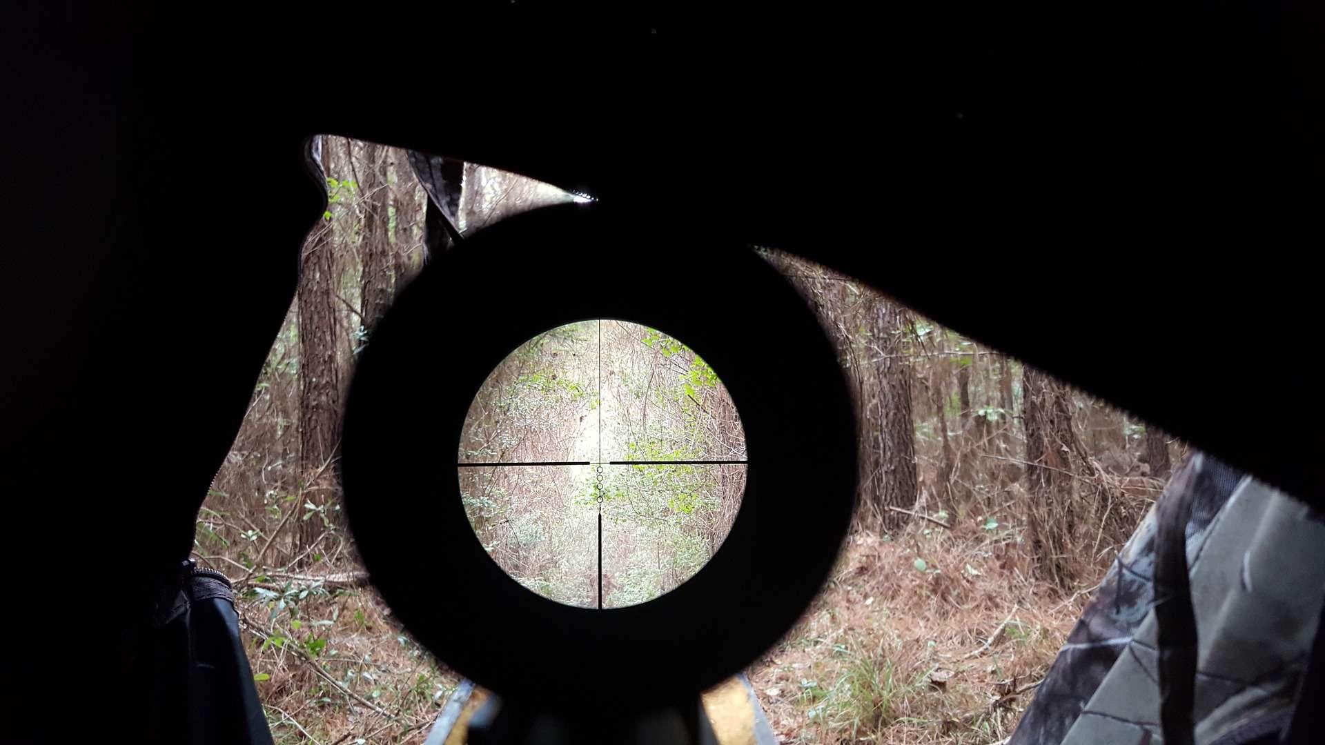 View through Scope at Target