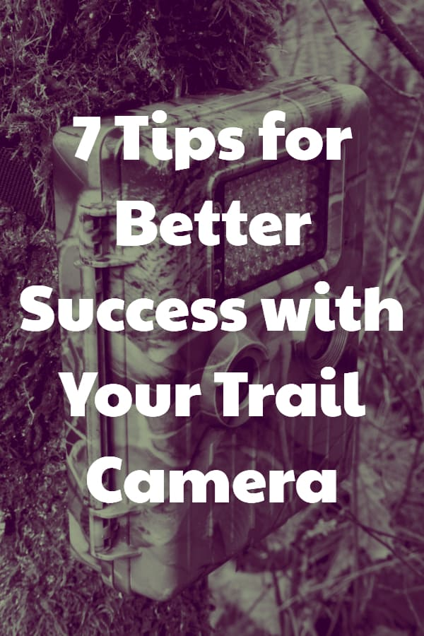7 Tips to improve your use of a Trail Camera