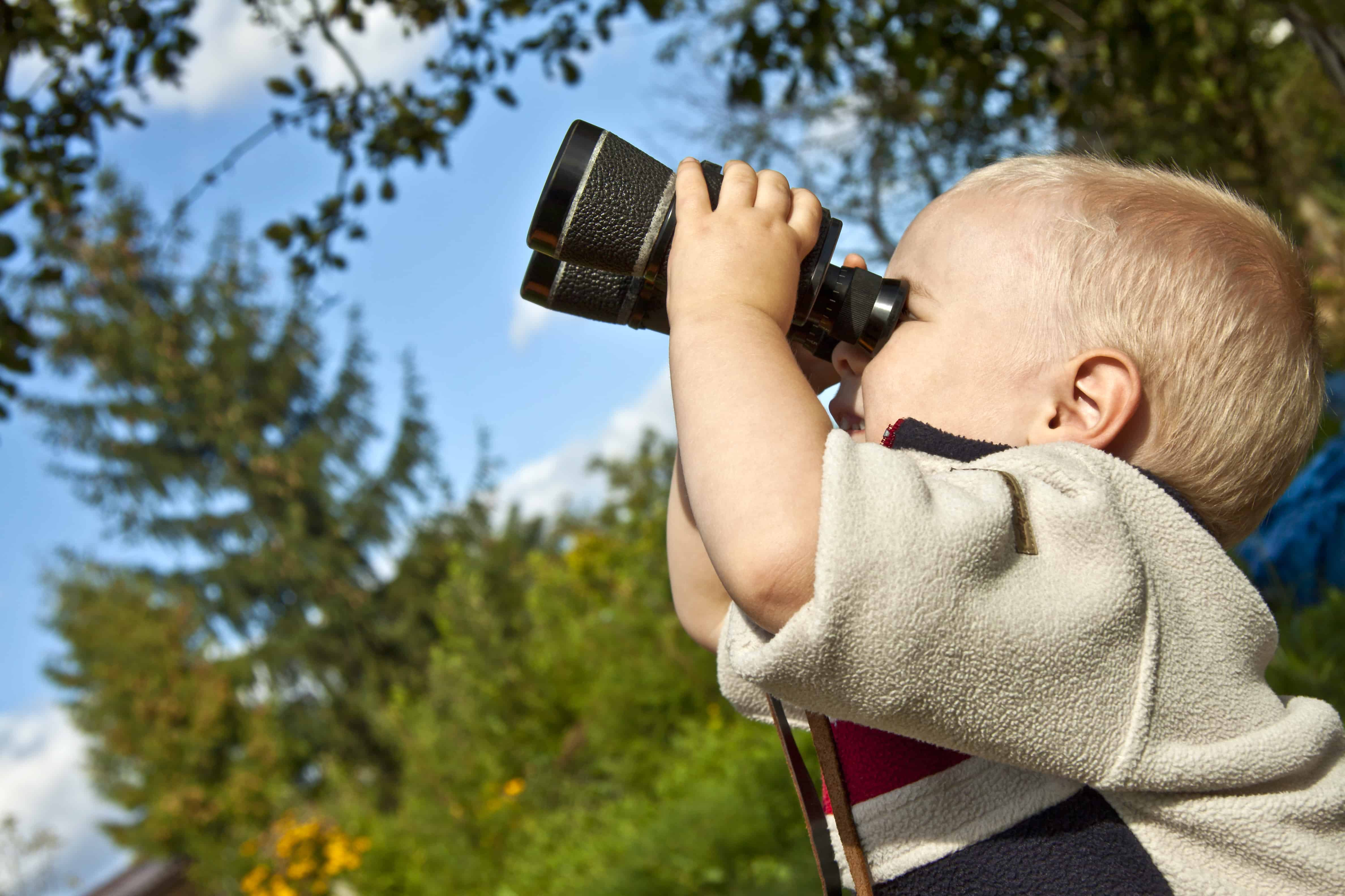 Birdwatching and Hunting with Binoculars