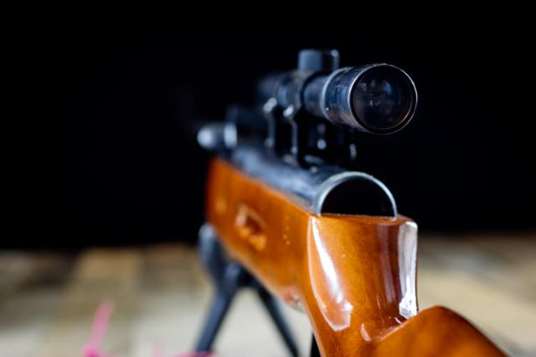 Best Scopes for Air Rifles