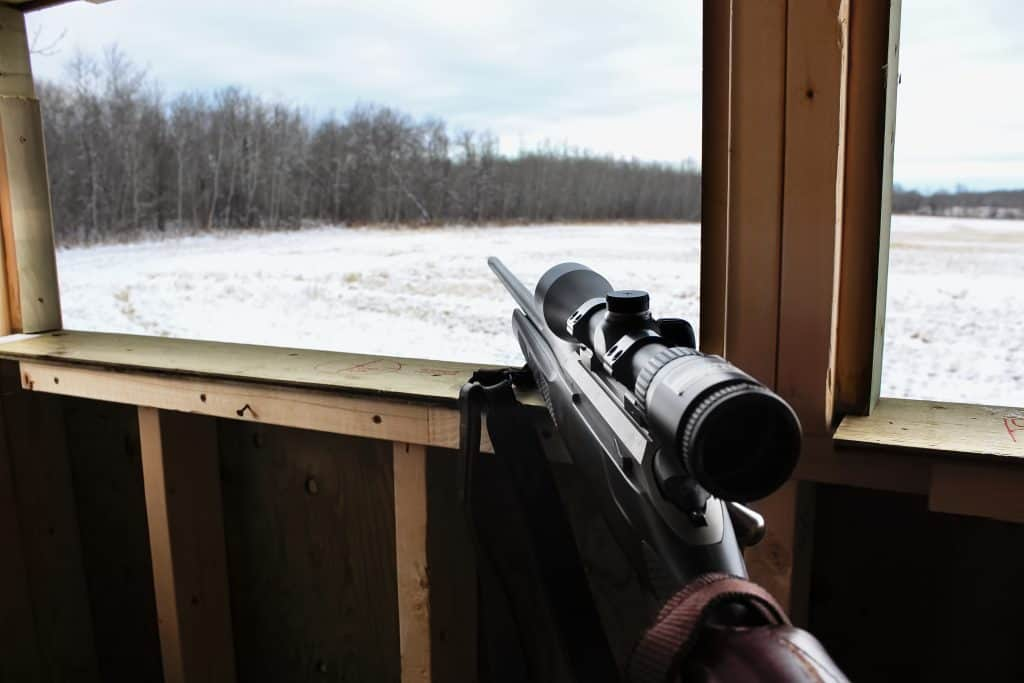 Best Hunting Optics for Deer