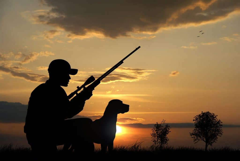 Best Rifle Scope for Hunting under $300