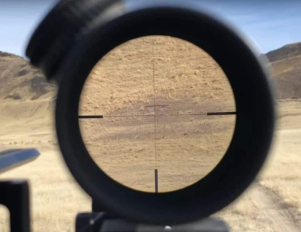 Long Range Shooting