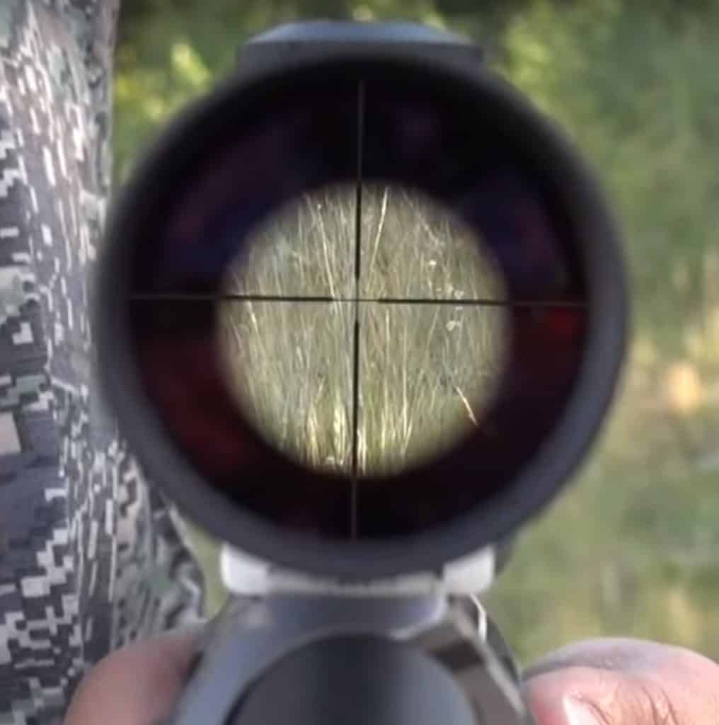Fixed Power RIfle Scope
