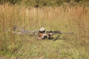 Deer Hunting with the best rifle optics