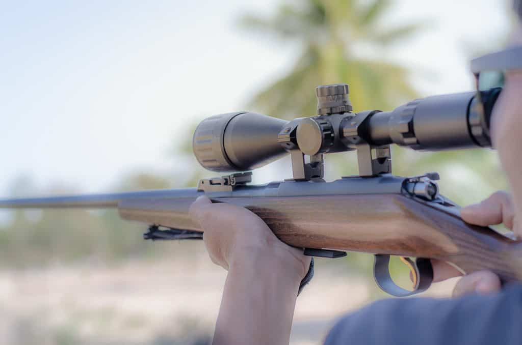 picking the best magnification for your rimfire scope